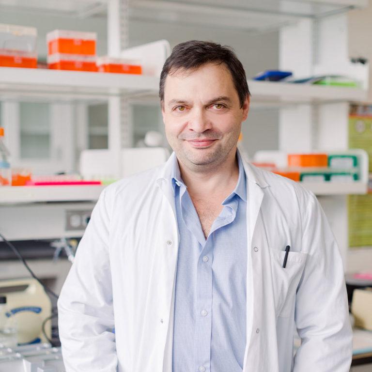 David Cheishvili